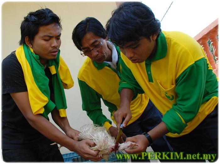 Praktikal sembelihan ayam yang dilakukan oleh mahasiswa Kelab Perkim UniKL sambil diperhatikan oleh penduduk setempat.
